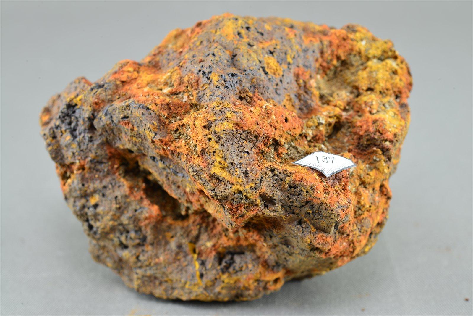 札幌地質探究部(岩石や鉱物が創...